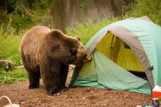 tent danger